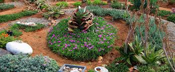 Small Picture Love Landscapes Succulent Landscaping Services Small Garden