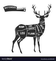 Deer Butcher Chart Deer Meat Cuts Black