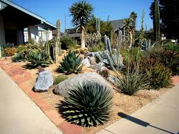 Small Picture Drought Resistant Landscaping From Drought Resistant Landscaping