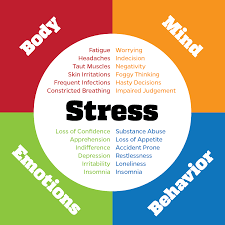Stress Chart How Stress Can Cause Overall Health Issues Clara Whyman