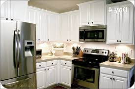 Home Depot Kitchen Hampton Bay Kitchen Cabinets Home Depot Cabinet Home