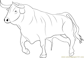 Small Picture Bull Ready for Fighting Coloring Page Free Bull Coloring Pages