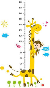 Amazon Com The Monkey On The Giraffes Neck Height