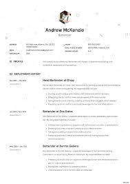 Beautiful Bartending Cv Format Composition Documentation