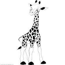 Giraffe Color Pages Giraffe Coloring Page Coloring Page Giraffe