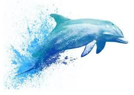 <b>Dolphin Temporary</b> Tattoo - <b>Watercolor</b> Tattoos (With images ...