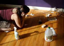 picture of try wiping up the mold picture of try wiping up the mold if the hardwood floor
