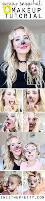 best dog makeup ideas on makeup cheetah