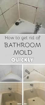 how to get rid of mold on bathroom walls image bathroom 2017 36 inch in how