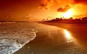 Tropical beach sunset hd #6912733