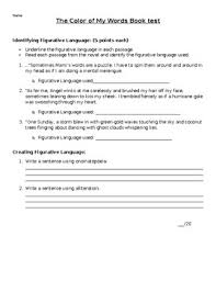 the color of my words essay test by victoria allen tpt the color of my words essay test