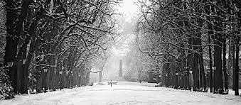 black and white snow photography. Wonderful Snow Black U0026 White Snow Photography With And D