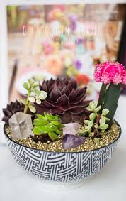 how to make a succulent garden.  Succulent DIY SUCCULENT GARDEN To How Make A Succulent Garden