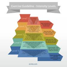 Exercise Guidelines Exercise Intensity Fitness In