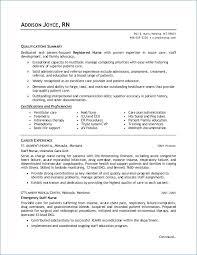 Example Of Rn Resume Unique Application Letter Resume Resumelayout