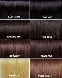 Dark Brown Red Hair Color Chart Dark Brown Hair Color Chart World Of Printables Colour