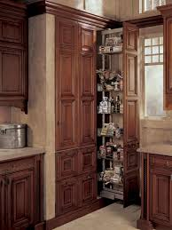 Roll Out Pantry Cabinet Pantries For An Organized Kitchen Diy