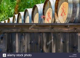 storage oak wine barrels. A Stack And Row Of Aged Oak Wood Cask Barrels For Wine Storage Outdoors