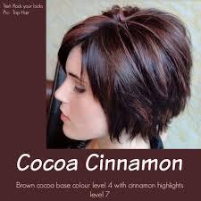 Cocoa Cinnamon I M Seriously Thinking