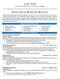 online marketing resume example online marketing resume sample