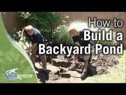 Backyard Videos