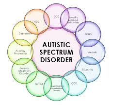 autism expository essay sample net autism disorder about a century ago people noticeable mental deprivations were mostly considered ill and placed in asylums
