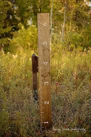 2x4 Ruler Growth Chart Huge Oversized Growth Chart Ruler Hand Painted Solid Wood