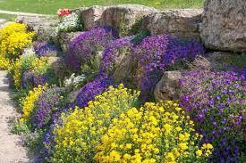 an eye catching rock garden idea with