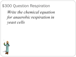 write the chemical equation for anaerobic respiration in yeast cells 300 question respiration