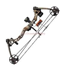 Bear Archery Apprentice 2 Compound Bow Pink 50 Lbs Rth Package Right Hand