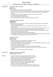 Trade Support Resume Samples Velvet Jobs