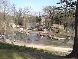 The crystal palace dinosaurs were the first sculptures of dinosaurs anywhere in the world. Crystal Palace Dinosaurs Wikipedia