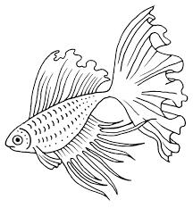 beta fish stamp