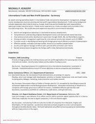 Business Development Objective Statement Public Administration Resume Objective Resume Sample