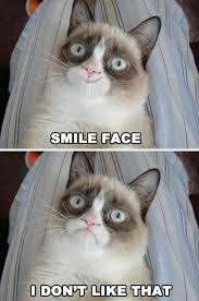 Smile Face - Grumpy Cat Meme - See Funny Images & Photos Every Day ... via Relatably.com