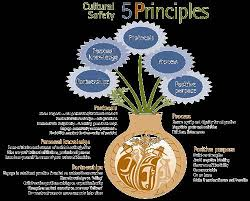 principles for culturally competent care