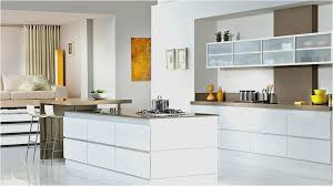 glass kitchen cabinet doors. Fine Glass How To Make Glass Kitchen Cabinet Doors New Fresh Door  Decorating Ideas For