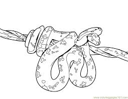 Small Picture Coloring Pages Snake Reptile Free Printable Page Bebo Pandco