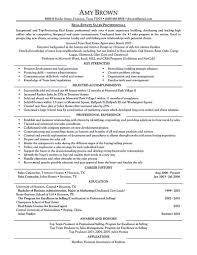 Real Estate Resume Examples Examples Of Resumes