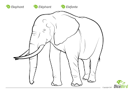 Small Picture The Elephant coloring sheet for kids