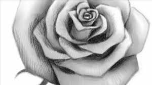Small Picture How to Draw an Open Rose YouTube