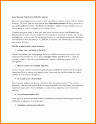 Objective Statements For Resumes Inspiration It Resume Objective Statements Resume Objective 55