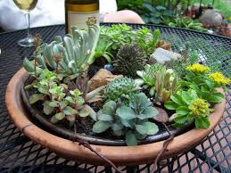 Small Picture Best Dish Gardens Designs In Modern Home Interior Design Ideas