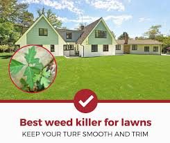 Image For Lawns Top 5 Best Weed Killers For Your Lawn 2019 Review