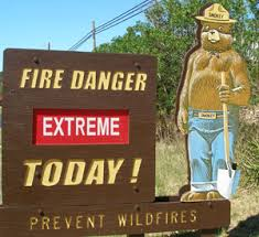 Image result for forest fire warning