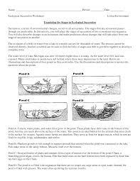 further Taiga Ecosystems   4th Grade Reading  prehension Worksheet besides Grasslands Ecosystem   Worksheet   Education together with What's in Your Cells    Reading  prehension worksheets furthermore Ecosystem Worksheets   Homeschooldressage also  in addition Ecosystems   4th Grade Reading  prehension Worksheet in addition Types of Ecosystems  Grade 3    Free Printable Tests and also Reading  prehension worksheets 4 th grade useful capture gr 4 wk additionally Ecosystem Worksheets   Homeschooldressage likewise science worksheets ecosystem   Biology Worksheet   Get Now DOC. on ecosystems science comprehension worksheets