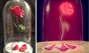 beauty and the beast floating rose 15 diy teen girl room ideas