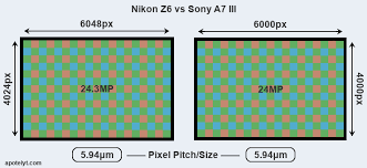 Nikon Z6 Vs Sony A7 Iii Comparison Review