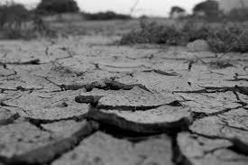 水不足に関する写真写真素材なら写真ac無料フリーダウンロードok