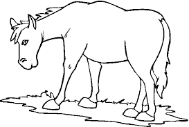Farm Animal Coloring Pages Horse Coloringstar
